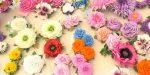 Цветы из формалина – мастер-класс для начинающих, схемы, шаблоны